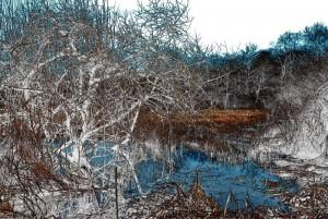 20140122194418 dsc 0016 hiver bleu rouge nb l800